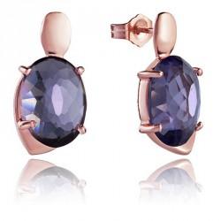 Pendientes VICEROY Jewels 9012E100-57 plata de ley