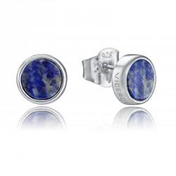 Pendientes VICEROY Jewels 8101E000-43
